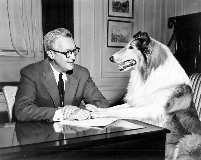 Lassie_meets_with_sponsor_1954